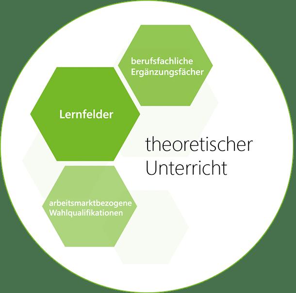 theoretischer Unterricht - Lernfelder, arbeitsmarktbezogene Wahlqualifikationen, berufsfachliche Ergänzungsfächer